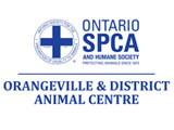 Orangeville Logo