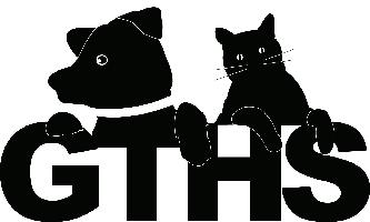 Georgian Triangle HS Logo