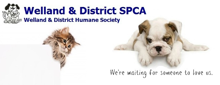 Welland & District SPCA logo