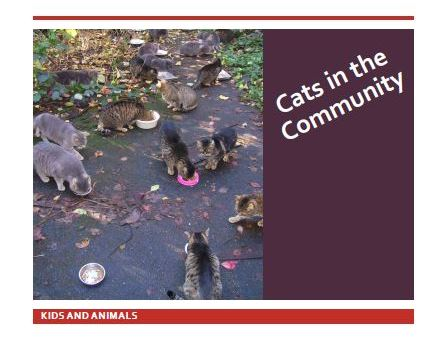 Cats in the Community cover.jpg