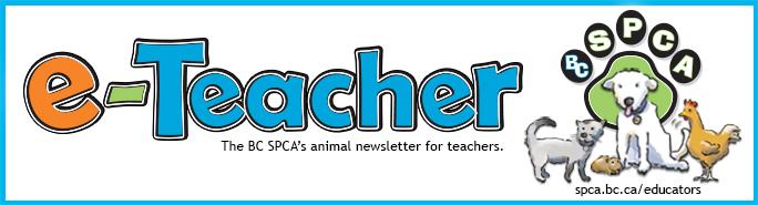 e-Teacher header banner for stationary 2013